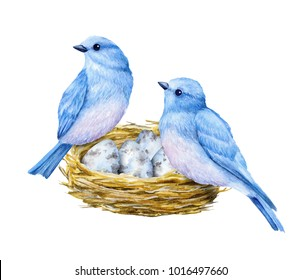 Cute little blue birds with nest and blue eggs. Watercolor illustration. Cute animals and birds. Spring symbol. Happy Easter. Blue luck bird