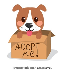 Cute little dog showing tongue inside cardboard box with adopt me text