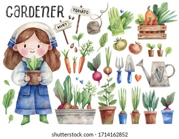 Cute little gardener girl and her tools - rake, shovel, watering can, gloves, pots, plants and vegetables - hand-drawn in watercolor and isolated on white background illustration.