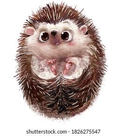 cute lovely little hedgehog character