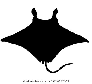 Cute manta ray silhouette background material