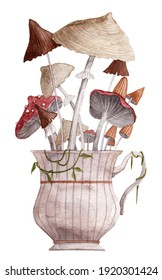 Cute old vintage cup with bunch of different mushrooms. Watercolor illustration