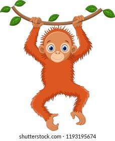 Cute orangutan cartoon hanging on tree branch