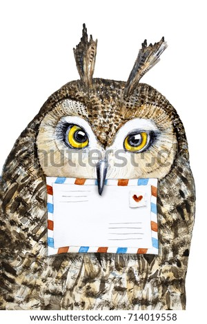 Cute owl portrait with