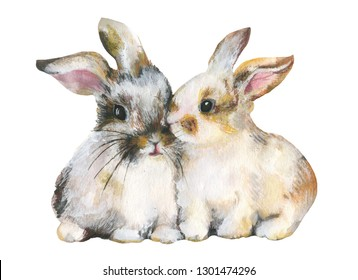 Cute pair of rabbits on white background.Mixed media. Watercolor, pastel pencils, gouache.