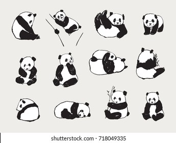 Cute Panda bear illustrations, collection of  hand drawn animals, black and white icons
