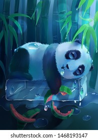 Cute panda sleep drooling on ice after eaten watermelon in bamboo forest illustration