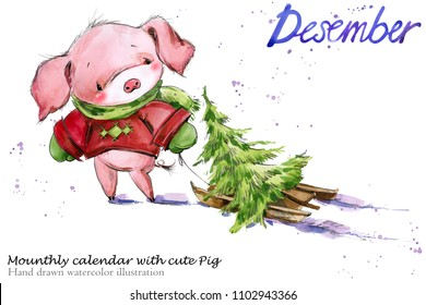 Cute pig hand drawn watercolor illustration. Mounthly calendar with piglet. December