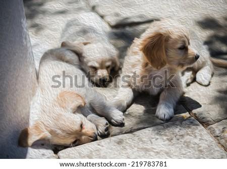 Cute Puppies Sleeping Sun Cool Oil Stock Illustration Royalty Free