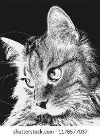 Cute pussycat relaxed looking to the side. Portrait of a cat's face in profile. Illustration in black and white colors. Halftone pattern, art poster, wallpaper for your design.