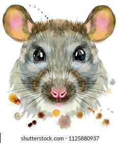 Cute rat for t-shirt graphics. Watercolor rat illustration