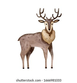 Cute reindeer-watercolor illustration isolated on white background. Cartoon stylized animal character, hand drawn clipart. Illustration for clothes, stickers, baby shower, greeting cards, prints.