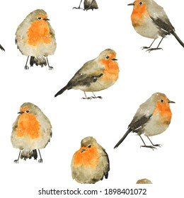 Cute seamless pattern of Robin bird on white background. Watercolor hand drawing illustration. Winter grey and orange bird. Perfect for print on fabric, textile, paper.
