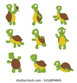 Cute turtle. Green tortoise child in various poses. characters isolated. Illustration of green character with shell, turtle happy