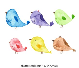 Cute watercolor birds on a white background. Suitable for printing on textiles, wrapping paper, bags, covers and postcards, web design and printed products.