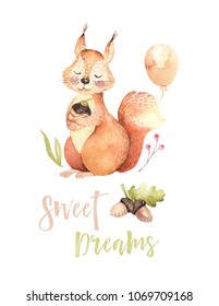 Cute watercolor bohemian baby squirrel animal poster for nursery, alphabet woodland isolated forest decoration illustration. Baby shower animals invitation