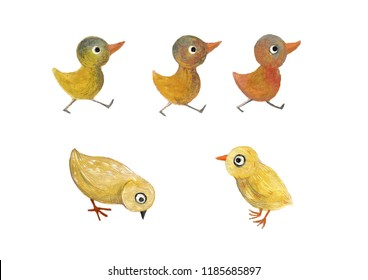 Cute watercolor chickens on the isolated white background.  Completely drawn by hand.