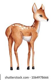 cute watercolor little deer baby watercolor bembi cartoon baby nursery