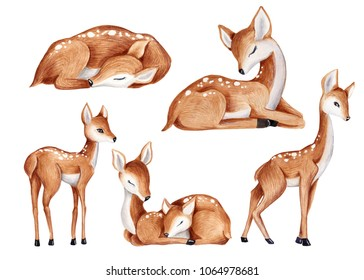 cute watercolor little deer baby watercolor bembi cartoon baby nursery  Deer set baby animal set clip art