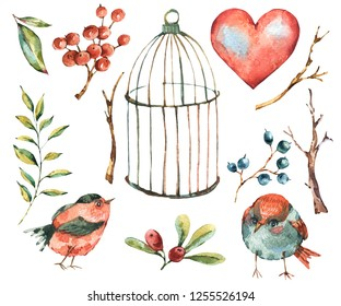 Cute watercolor natural floral set of birds, tree twig,heart, berries, leaves and cage, isolated vintage collection, Valentine design elements