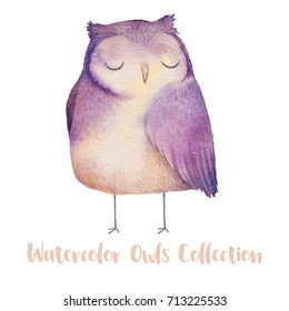 Cute watercolor owl. Hand drawn watercolor illustration with animal