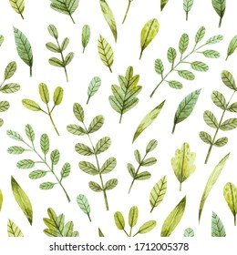 Cute watercolor seamless pattern with green leaves on white background. Hand drawn texture with leaves and branches