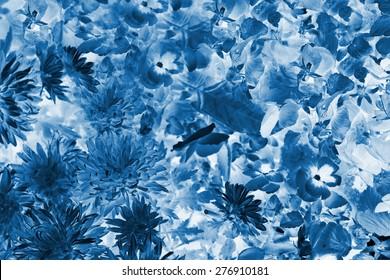 Cyanotype of x-ray lotus