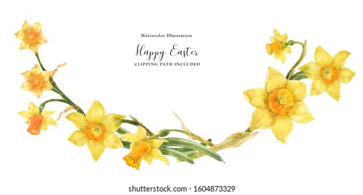 Daffodil flowers in floral watercolor arc on a white background, clipping path included