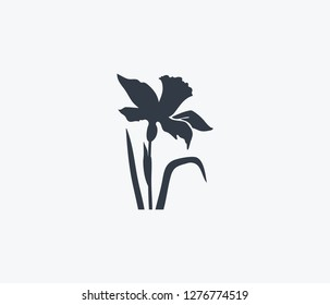 Daffodils icon isolated on clean background. Daffodils icon concept drawing icon in modern style.  illustration for your web mobile logo app UI design.