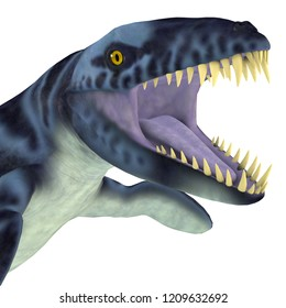 Dakosaurus Marine Reptile Head 3D illustration - Dakosaurus was a marine carnivorous reptile that lived in the seas of Europe, Mexico and Argentina during the Jurassic and Cretaceous Periods.