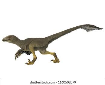 Dakotaraptor Dinosaur Side Profile 3D illustration - Dakotaraptor was a carnivorous dromaeosaurid theropod dinosaur that lived in South Dakota, North America during the Cretaceous Period.