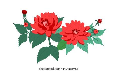 Daliya Flower Beautiful Green Garden Winter Flower