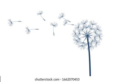 Dandelion raster. Make a Wish. Simple minimalist style.