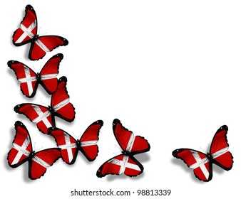 Danish flag butterflies, isolated on white background