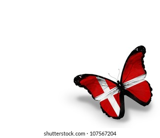Danish flag butterfly, isolated on white background