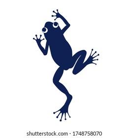 Dark Blue Colored American Frog