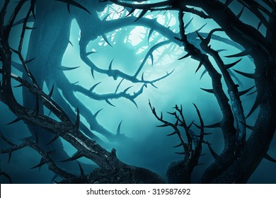 dark forest with thorny bushes in green fog at night