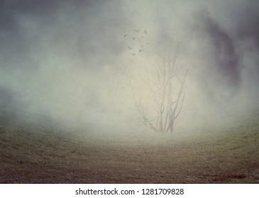 Dark misty landscape with spooky leafless trees, photomanipulation, illustration.