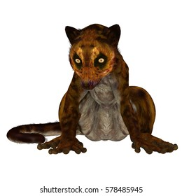 Darwinius Primate on White 3d illustration - Darwinius is lemur-like early primate that lived in the Eocene Period in Germany.