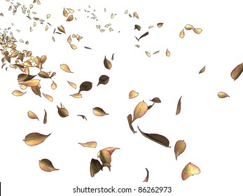 Dead leaves flying in the wind on a white background, referring to concepts such as nature, seasons, wind, liberty, as well as change