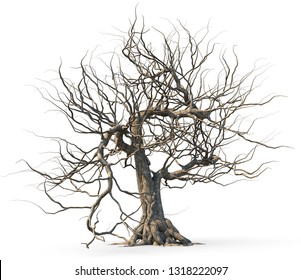 Dead tree isolated on white background, 3D illustration.