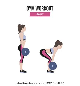 Deadlift. Deadlift with a barbell. Sport exercises. Exercises in a gym. Illustration of an active lifestyle.