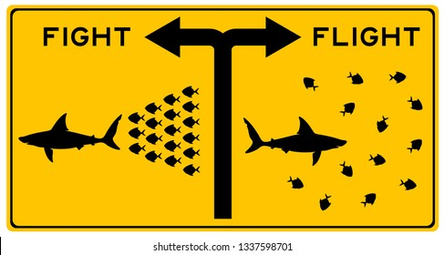 deciding whether to fight or flight