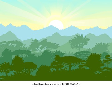 Deciduous forest. Silhouette. Mature, spreading trees. Thick thickets. Hills overgrown with plants. On the horizon there are mountains and ebo with the sunrise. Morning.