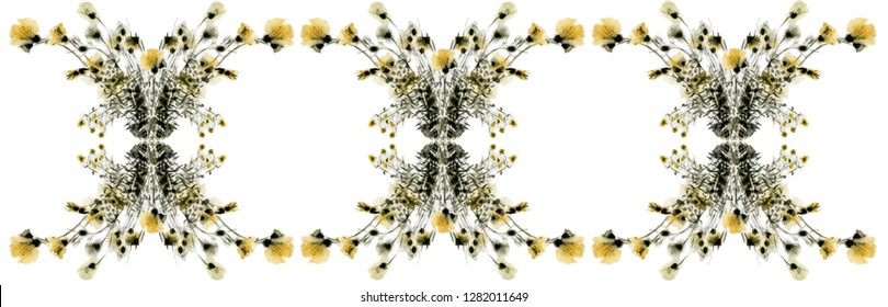 Decorative classic floral border. Winter bouquet of yellow and grey flowers.  Indian ink, watercolor.  Artwork picture on the white isolated background. Graphic art. Baroque style.
