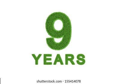 Decorative three-dimensional 9th anniversary or birthday celebration numeral with the number and text in textured fresh green grass for an eco-friendly greeting card or congratulations