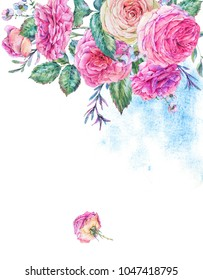 Decorative vintage watercolor english roses, Nature greeting card with flowers, leaf and buds, botanical floral illustration isolated on white background, vertical frame