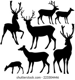 deer black and white silhouette set - collection of wild animals detailed outlines