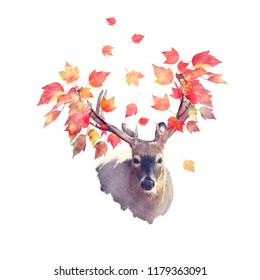 Deer male with autumn leaves . Autumn theme on white background.