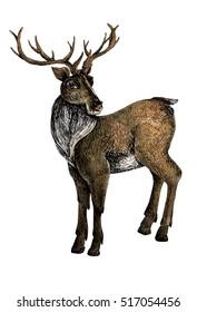 Deer mixed media grunge illustration isolated